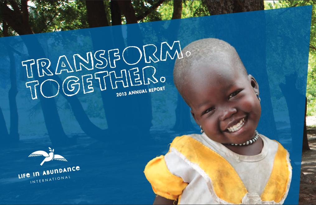 2013 annual report cover